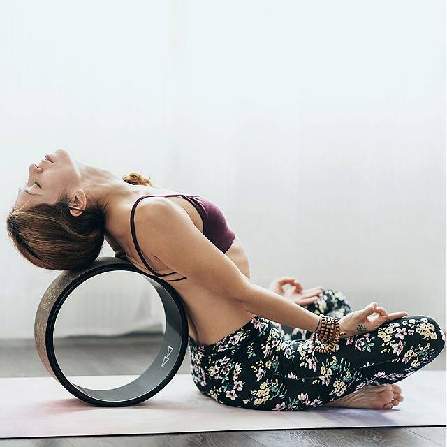 Full Circle Cork Yoga Wheel Shopping Exclusives 2